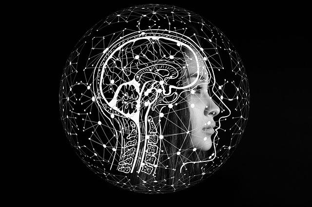 Redes neuronales, el ejemplo de Microsoft Brain Maker