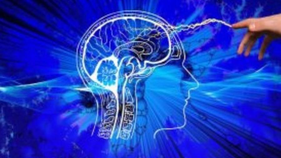 Neuromarketing aplicado para incrementar las ventas