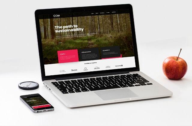 Pasos para un diseño responsive de un sitio web