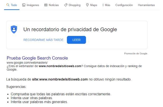 comprobar en Google Search si una página web está indexada