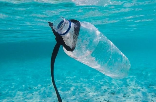 startups que disminuyen el uso de plástico