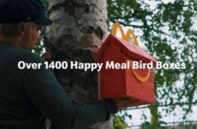 McDonald's instala casas para aves en peligro de extinción