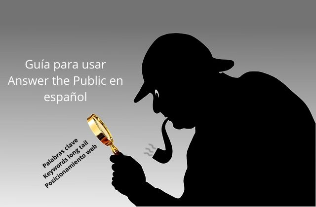 cómo usar Answer the Public en español