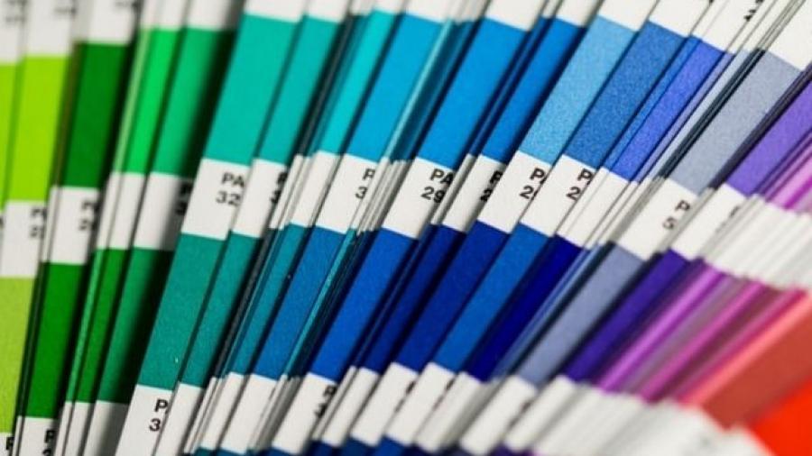 los colores en branding y la psicología de los colores