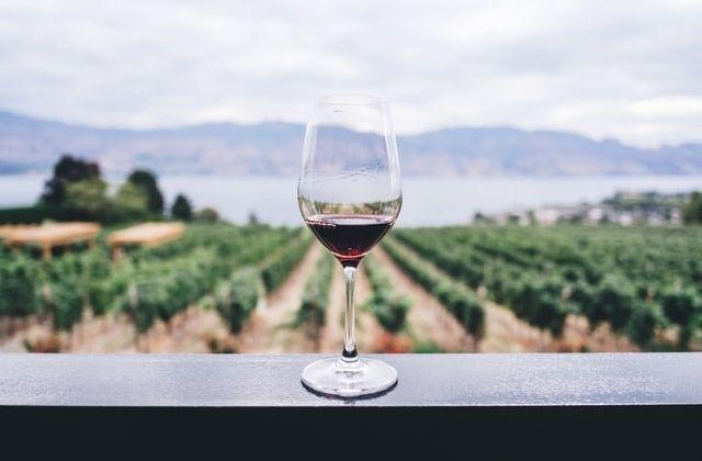 vinos argentinos Trivento